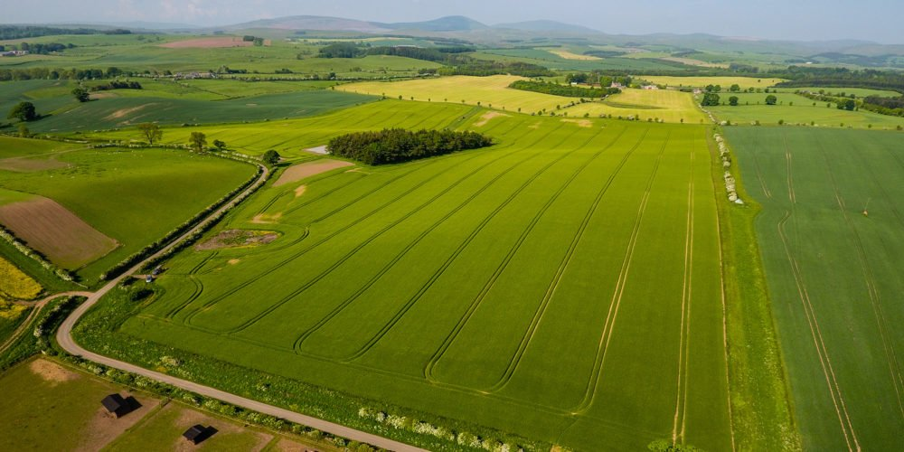 Drone mapping for arable crops