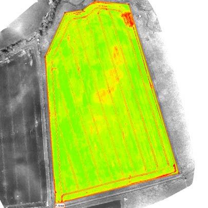 Google Earth & Pix4D for Easier Farm R&D - Drone AG