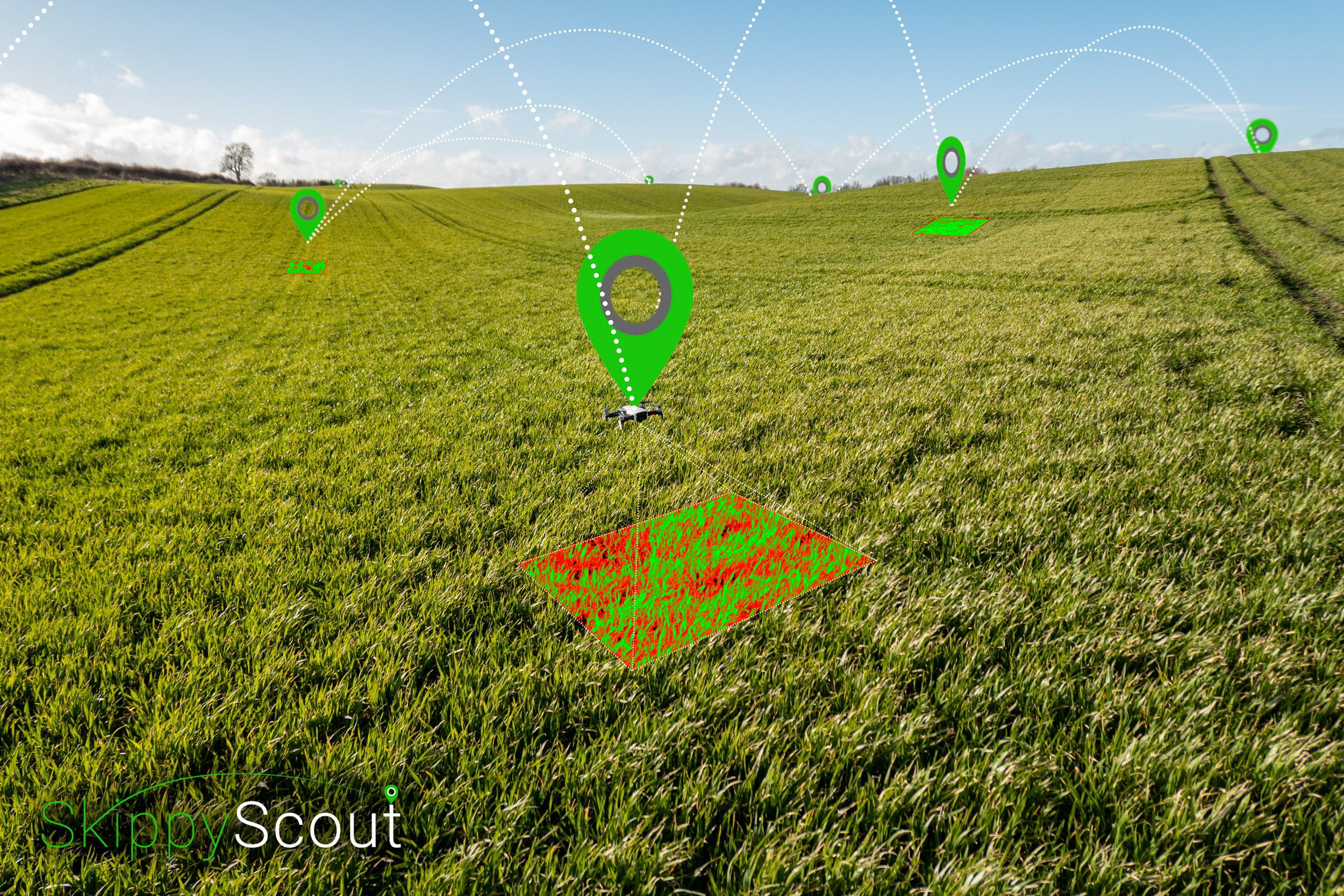 scouting fields with a drone