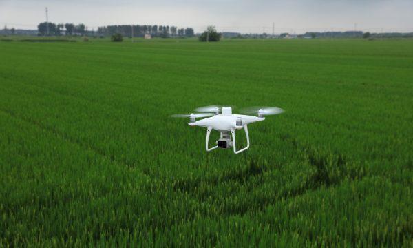 DJI P4 Multispectral drone with rtk